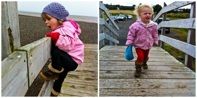 little girls, ocean, beanies